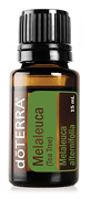 Melaleuca/Tea Tree Essential Oil